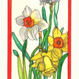 Daffodils - Card #JM88 $4
