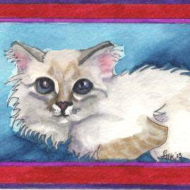 Dragan Kitten - DKB13 $4