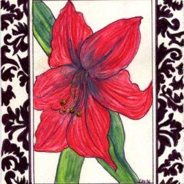 Red Amaryllis - DTKBD06 $4