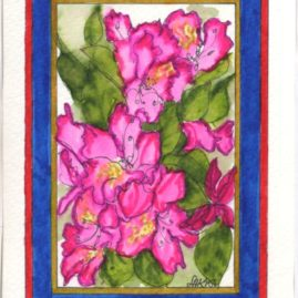 Rhododendron - JHB15in $4